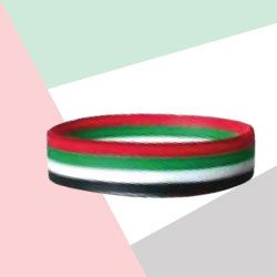 Silicone Wristband with UAE Flag Colors TZ-NDP-05
